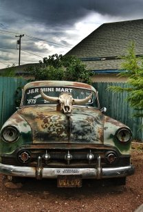 Image of rusted older car, with a cow skull perched on it's hood